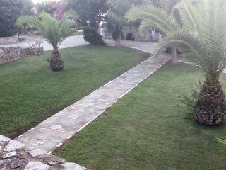 1500 sqm private garden with parking area