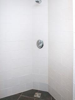 Walk in shower in ground floor ensuite
