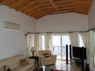Vaulted ceiling in the sitting room