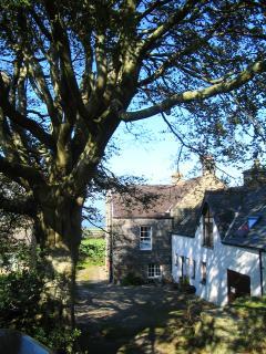 Cottage from West Garden