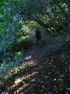 Lots of Beautiful Walks From Your Doorstep