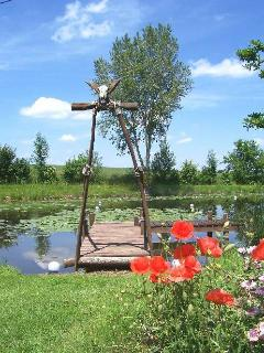 The pond and its jetty