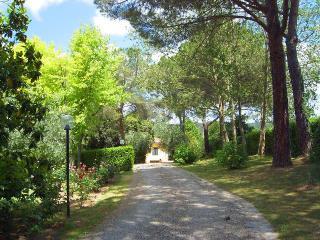 villa between Florence-Siena