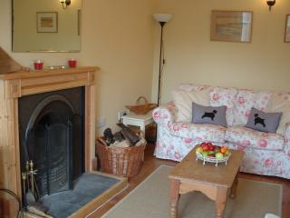 Main Lounge with open fire
