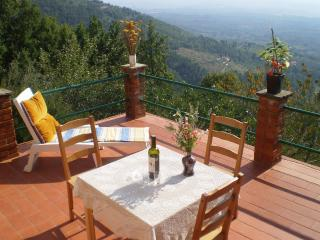Wonderful Tuscan holiday cottage in Barfoli with terrace and amazing view, Reggello