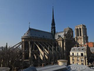 Notre Dame only for you!, Parigi