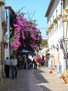 Obidos - street towards Walled City