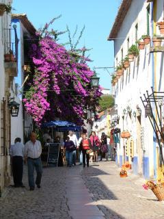 Obidos - street towards Walled City
