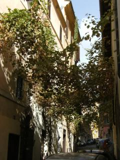 via dei Neofiti - Seitengasse der via Baccina