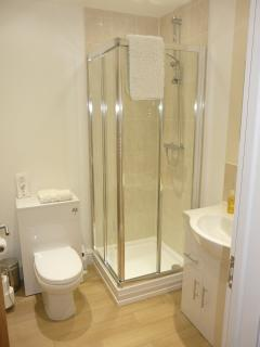 Ensuite shower room for master bedroom