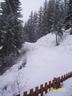Winter Path near the Chalet