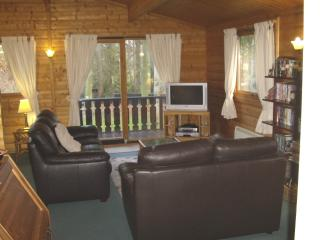 Open Plan Lounge with Leather Suite