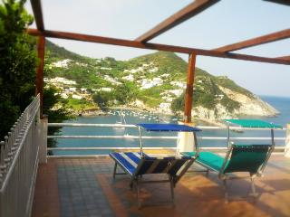 Palmarola Bay view