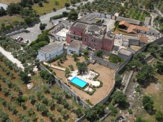 The pool: aerial view