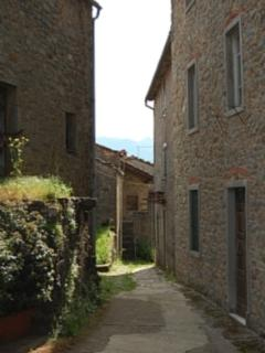 The ancient mule lane leading from the main piazza to the house. On the left is a honey laboratory.