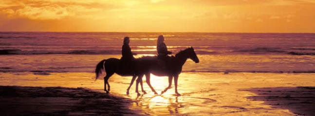 Horse Riding - down on the beach or lakes