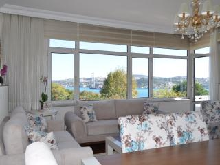 Bosphorus view apartment in Ciragan, Estambul