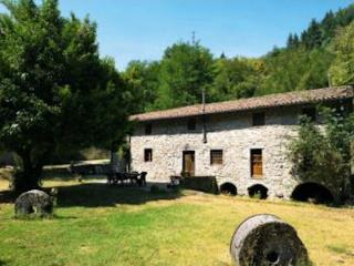 Il Vecchio Mulino, Restored watermill,private pool, Coreglia Antelminelli