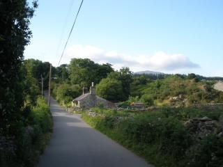 View of the cottage as you approach
