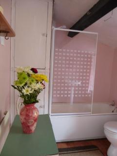 bathroom with a shower over the bath