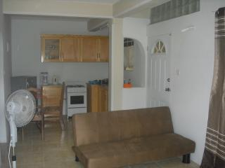 Kitchen , Living, Dining area in Single Bedroom Apartment