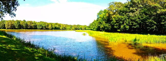 Vue panoramique de l'étang