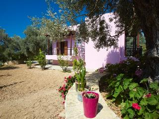 Athina house for holidays in real Cretan nature!