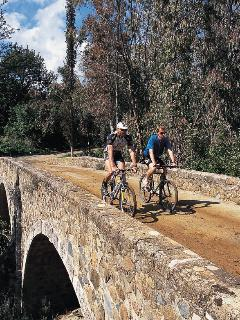 bike hire and optional guided tours