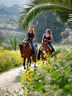 Horse riding at our Drapia Farm nearby