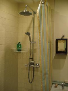 Deluge shower in bathroom over bath.