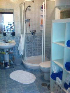 Shower/Bathrooom/wc.  Great power shower . Electric shaving point.
