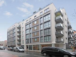 Luxury Quiet City Apartment