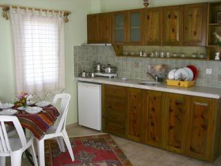 Sedir Resort an open kitchen with all equipments for 5 people