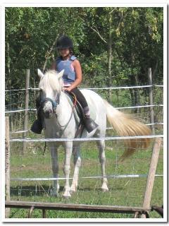 les balades à cheval pour grands et petits, débutants ou initiés