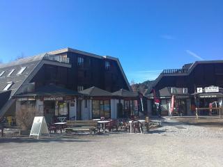 Le Galisson, Seyne les Alpes