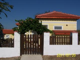 entrance to villa with grape vine