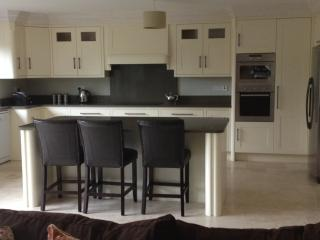 very spacious  kitchen /livingroom