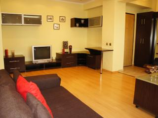 Beautiful 1 bedroom close to Cismigiu Gardens