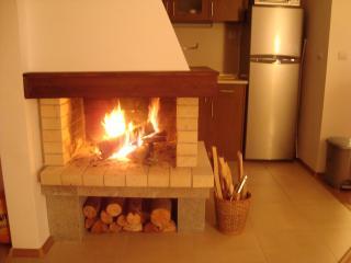Beautiful Open Log Fire