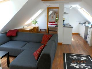 Open plan lounge/kitchen tastefully furnished