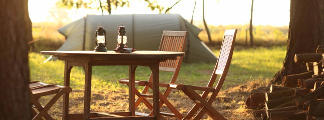 Sunny afternoon atmosphere at our Western camping meadow. Camp9 campground nature Poland