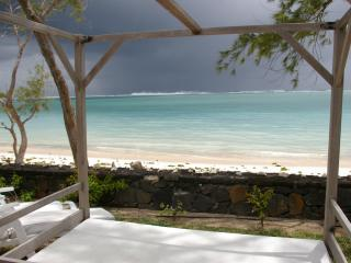 Tropical storm brewing - hot and wet- magical! ( from the daybed )