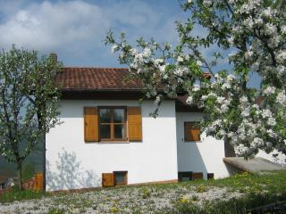 Holiday house Ložanka SPECIAL PRICE MAY - JUNE 2017, Kobarid