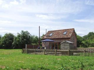 MALLARD, WiFi, woodburning stove Ref 904107, Newnham-on-Severn