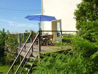 Our sunny decking overlooking the water