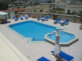 Swimming Pool /Terrace