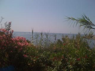 paradís davant del mar