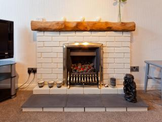 Easy to start gas fire