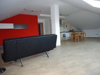 Amplio salón-comedor-cocina