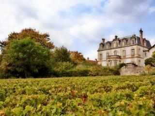 Chateau de Naugues, Chalon-sur-Saône
